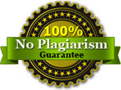 Custom papers no plagiarism